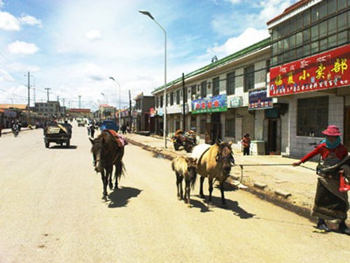Qinghai-a2
