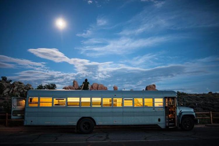 bus20n-7-web