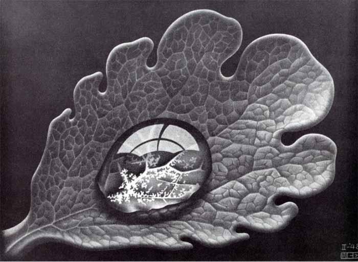 Maurits Cornelis Escher (1898-1972) Leaf